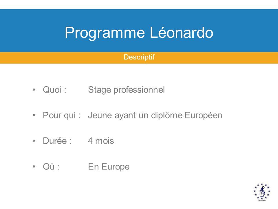Programme Léonardo Descriptif Quoi : Stage professionnel Pour qui : Jeune ayant un diplôme Européen Durée : 4 mois Où : En Europe