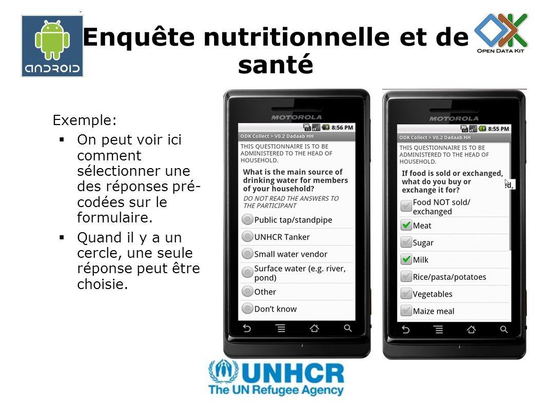 Enquête nutritionnelle et de santé Exemple: Ici on peut voir un endroit du formulaire où lénumérateur doit saisir du texte.
