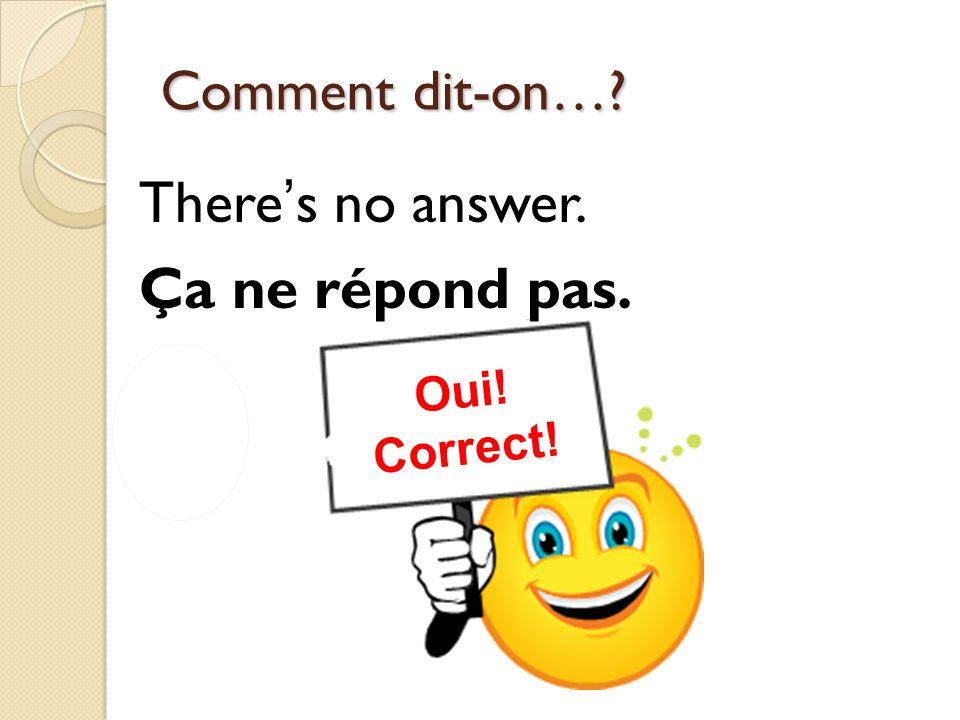 Non! Incorrect! Oui! Correct! Comment dit-on…? Theres no answer. Ça ne répond pas.