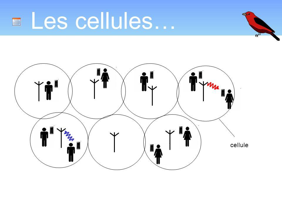 Les cellules… cellule
