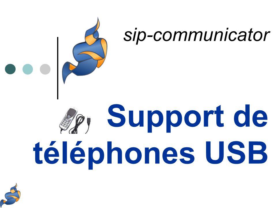 Communication par message à destination de fenêtre windows (api windows, SendMessage) Exemple : CALL user77 CALL 1001 STATUS ROUTING CALL 1001 STATUS RINGING CALL 1001 STATUS INPROGRESS CALL 1001 STATUS FINISHED Support de téléphones USB pour Sip communicator Le protocole skype https://developer.skype.com/Docs/ApiDoc