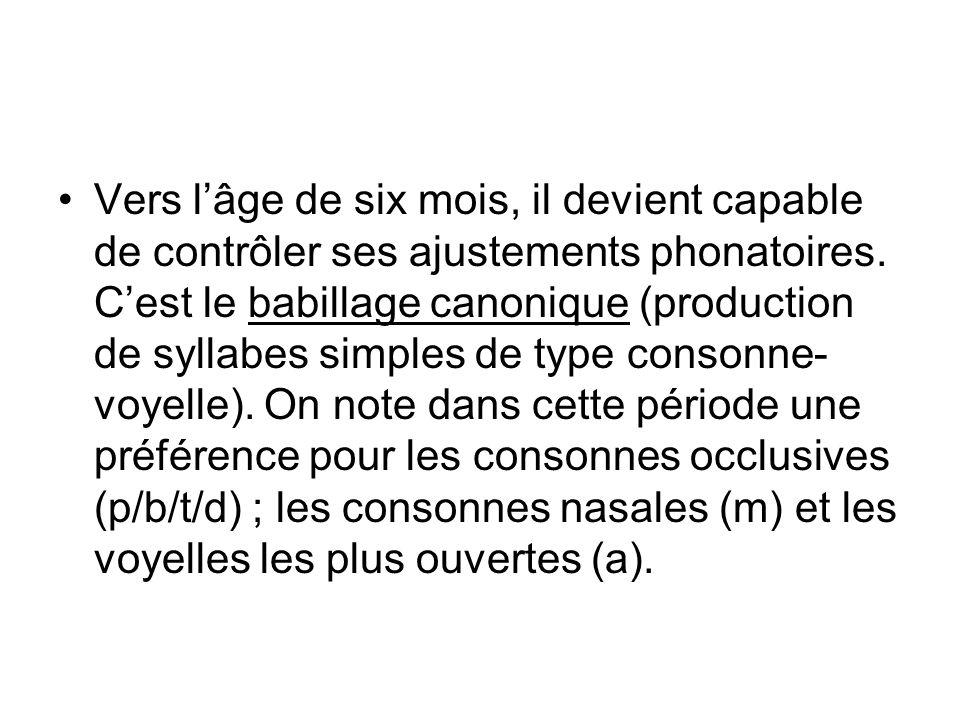 IV.QUELLE ORGANISATION pour le langage .