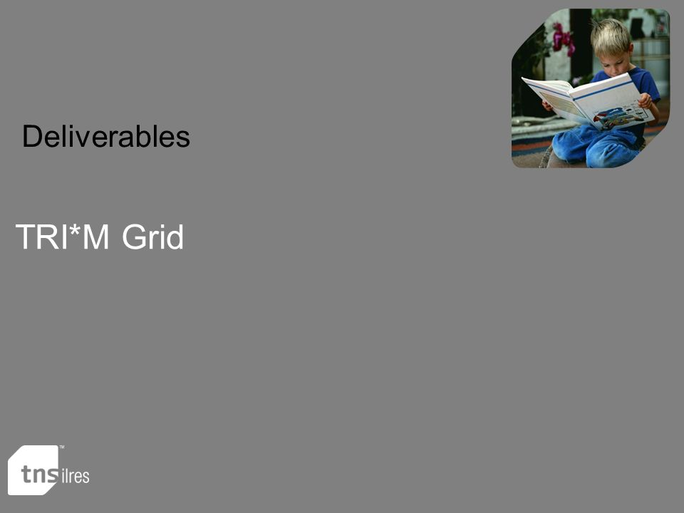 Deliverables TRI*M Grid
