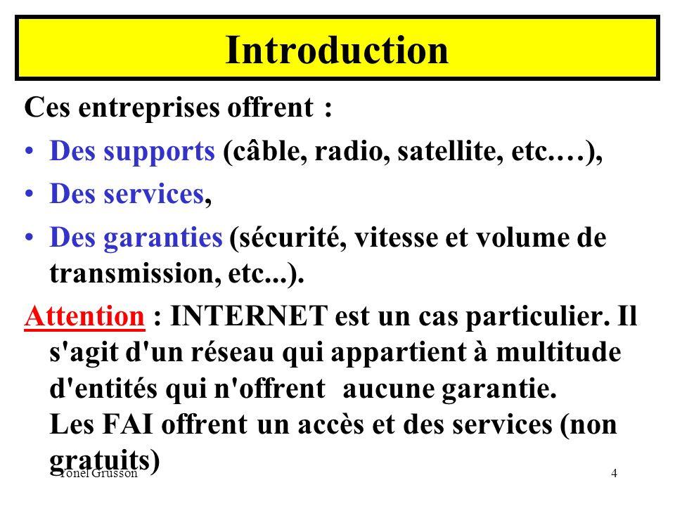 Yonel Grusson4 Ces entreprises offrent : Des supports (câble, radio, satellite, etc.…), Des services, Des garanties (sécurité, vitesse et volume de tr