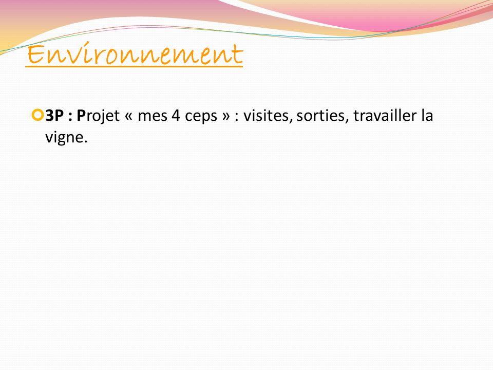 Environnement 3P : Projet « mes 4 ceps » : visites, sorties, travailler la vigne.