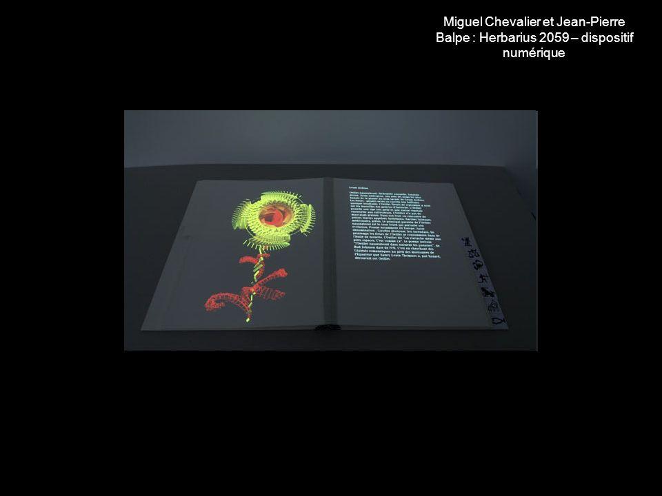 Miguel Chevalier : Fractal Flowers, dispositif numérique interactif