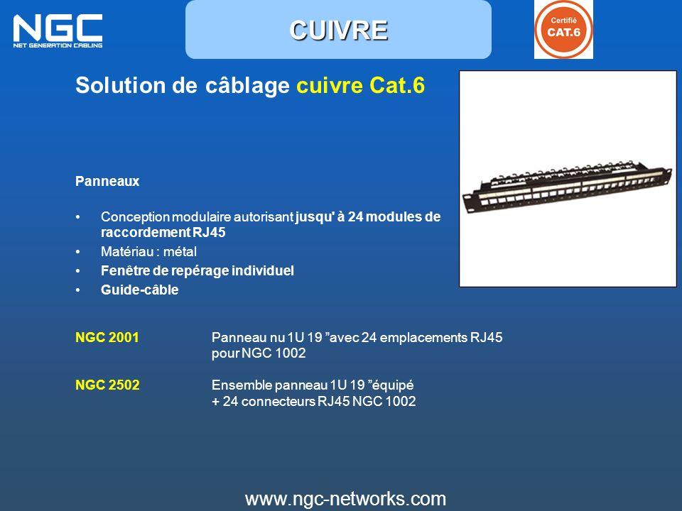www.ngc-networks.com Solution de câblage cuivre Cat.6 Panneaux Conception modulaire autorisant jusqu' à 24 modules de raccordement RJ45 Matériau : mét