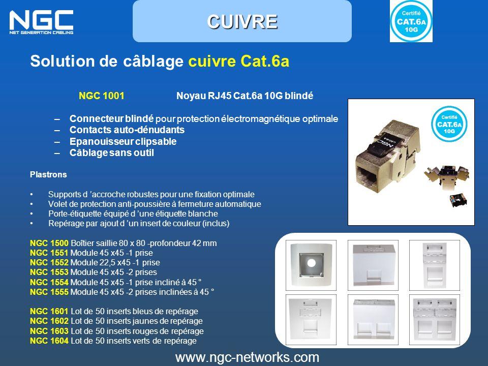 Solution de câblage cuivre Cat.6a NGC 1001 Noyau RJ45 Cat.6a 10G blindé –Connecteur blindé pour protection électromagnétique optimale –Contacts auto-d