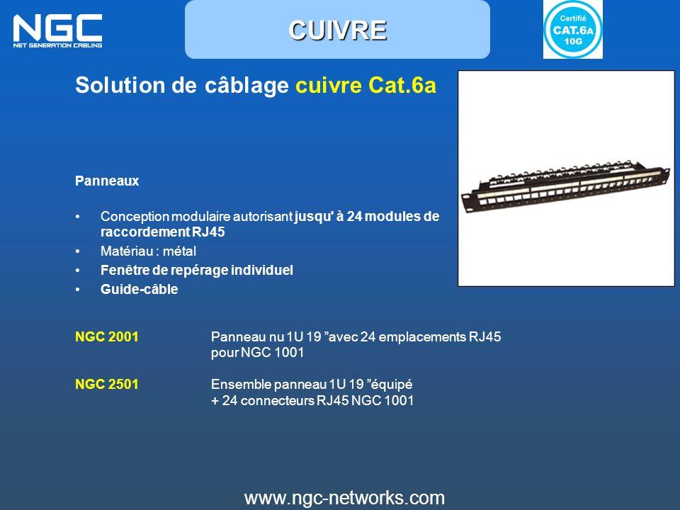 www.ngc-networks.com Solution de câblage cuivre Cat.6a Panneaux Conception modulaire autorisant jusqu' à 24 modules de raccordement RJ45 Matériau : mé