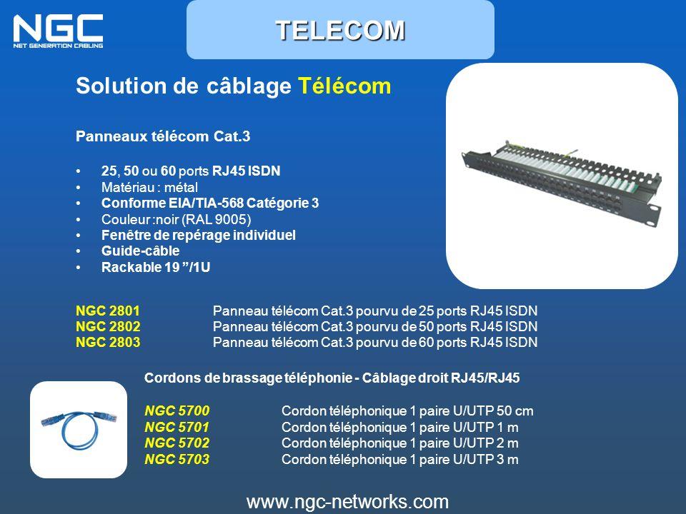 Solution de câblage Télécom Panneaux télécom Cat.3 25, 50 ou 60 ports RJ45 ISDN Matériau : métal Conforme EIA/TIA-568 Catégorie 3 Couleur :noir (RAL 9