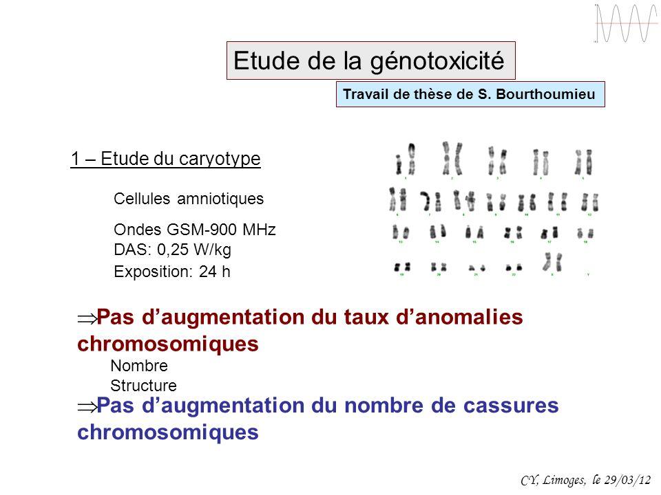 Etude de la génotoxicité Travail de thèse de S. Bourthoumieu Cellules amniotiques Ondes GSM-900 MHz DAS: 0,25 W/kg 1 – Etude du caryotype Pas daugment