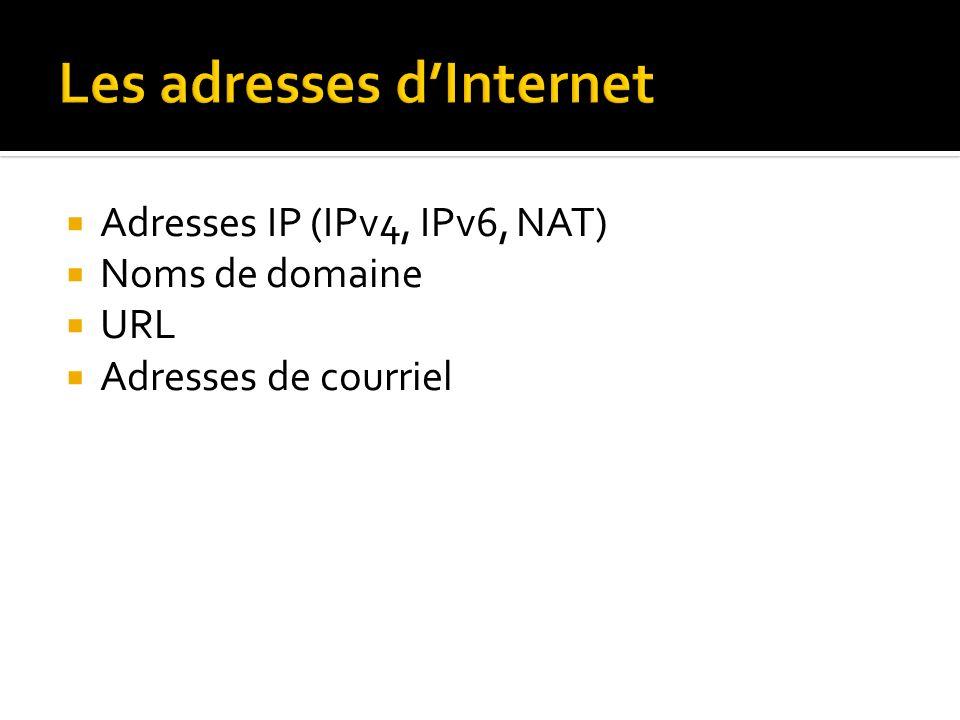 Adresses IP (IPv4, IPv6, NAT) Noms de domaine URL Adresses de courriel