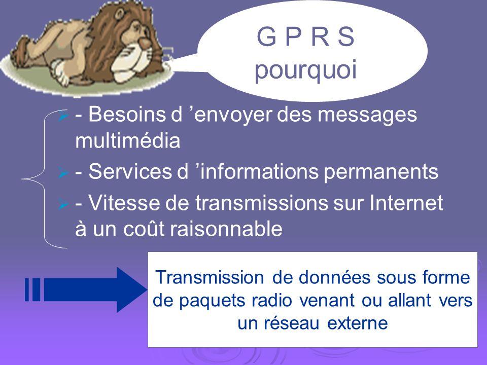 Quest-ce que le GPRS? GPRS: General Packet Radio System 2° génération de la norme GSM (G2+) 2° génération de la norme GSM (G2+) Navigation sur Interne
