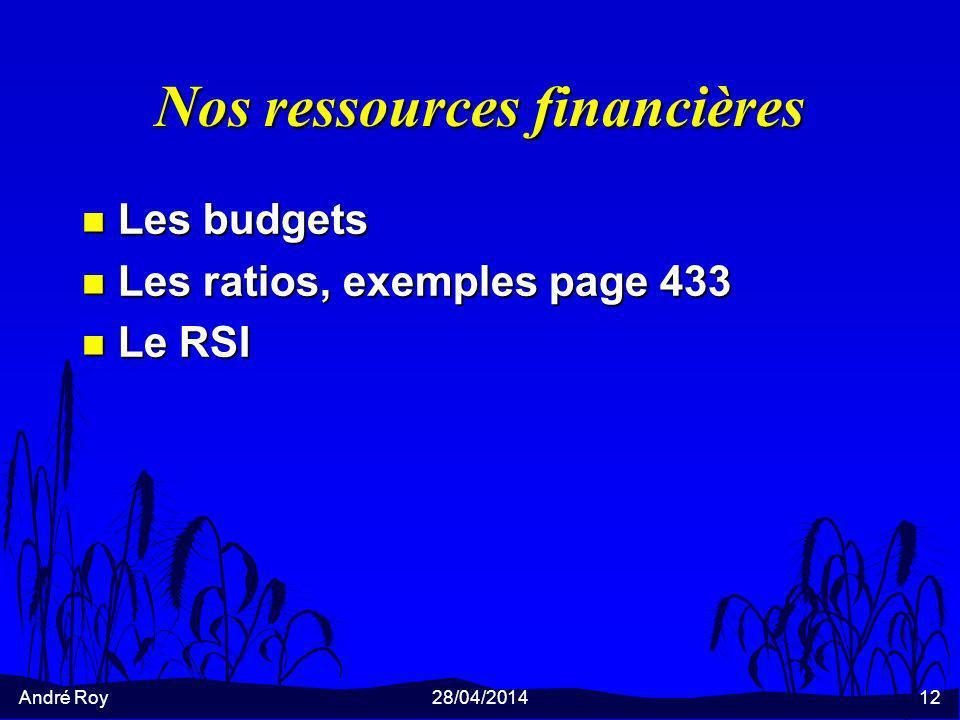 André Roy28/04/201412 Nos ressources financières n Les budgets n Les ratios, exemples page 433 n Le RSI