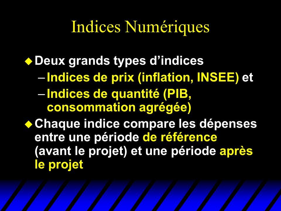 Indices Numériques u Deux grands types dindices –Indices de prix (inflation, INSEE) et –Indices de quantité (PIB, consommation agrégée) u Chaque indice compare les dépenses entre une période de référence (avant le projet) et une période après le projet