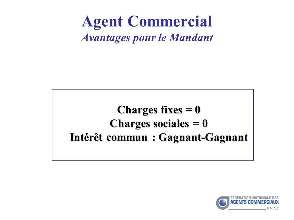 Agent Commercial Avantages pour le Mandant Charges fixes = 0 Charges sociales = 0 Intérêt commun : Gagnant-Gagnant