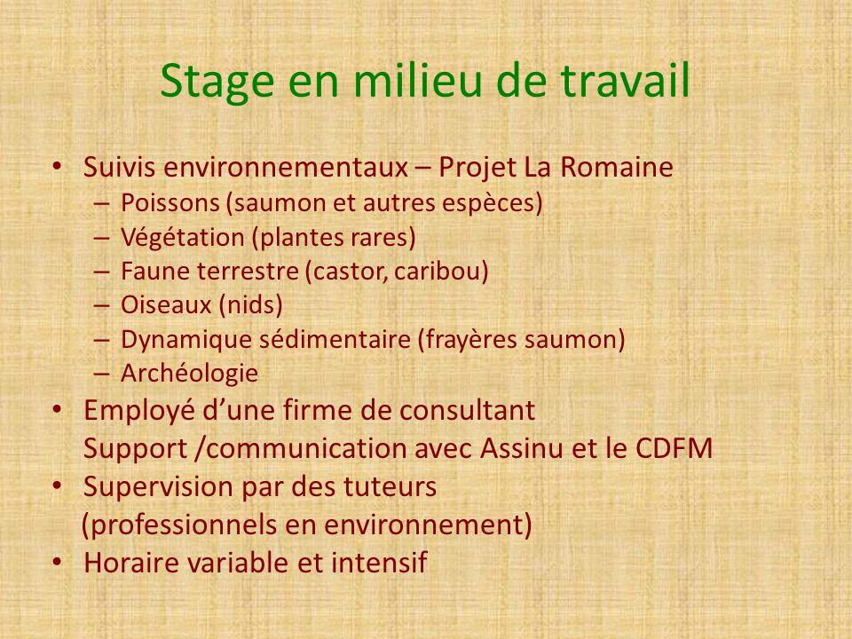 Stage en milieu de travail Suivis environnementaux – Projet La Romaine – Poissons (saumon et autres espèces) – Végétation (plantes rares) – Faune terr
