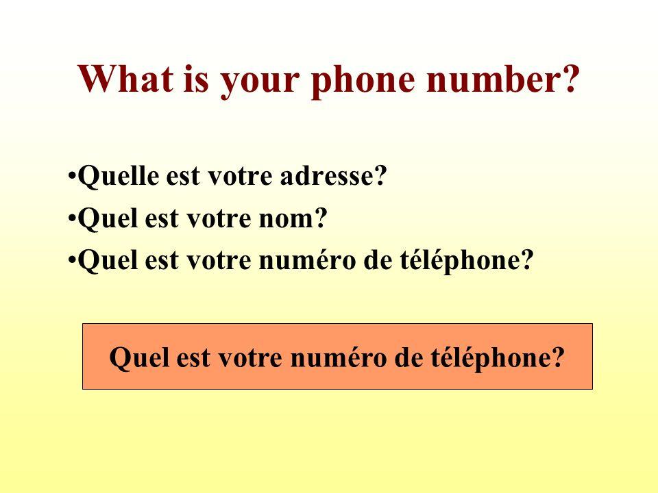 What is your phone number.Quelle est votre adresse.