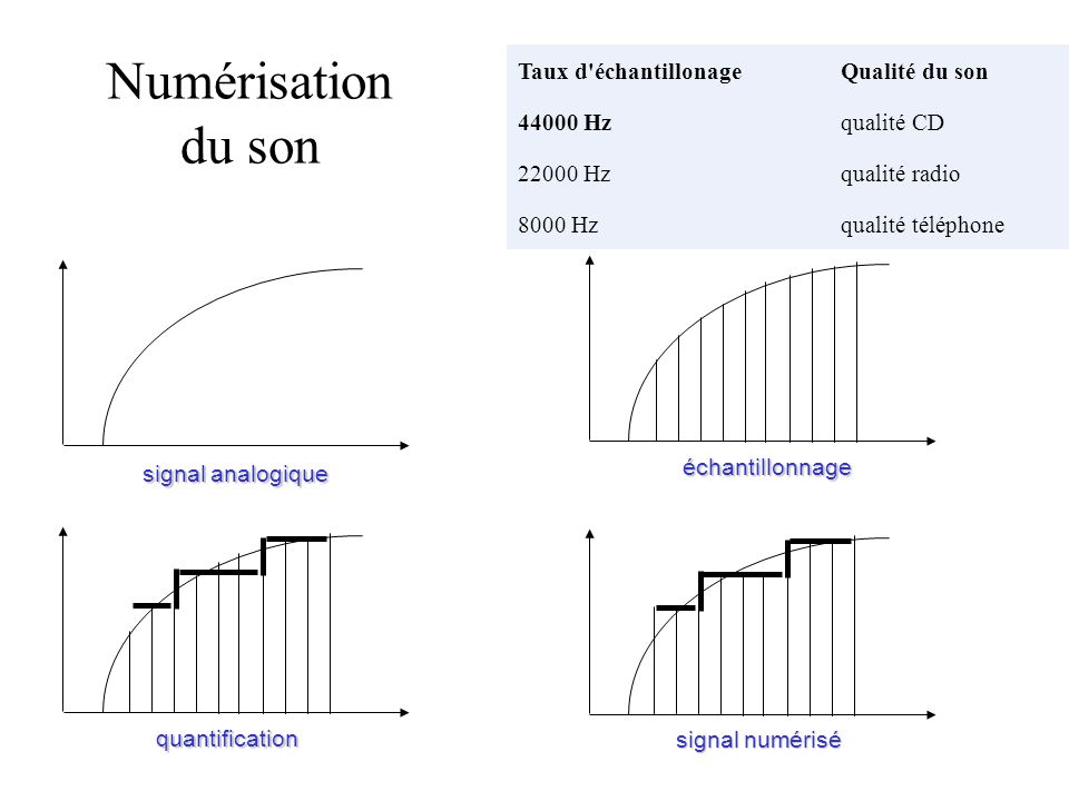 Taux d'échantillonageQualité du son 44000 Hzqualité CD 22000 Hzqualité radio 8000 Hzqualité téléphone signal analogique quantification signal numérisé