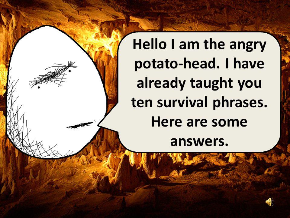 Hello I am the angry potato-head.I have already taught you ten survival phrases.