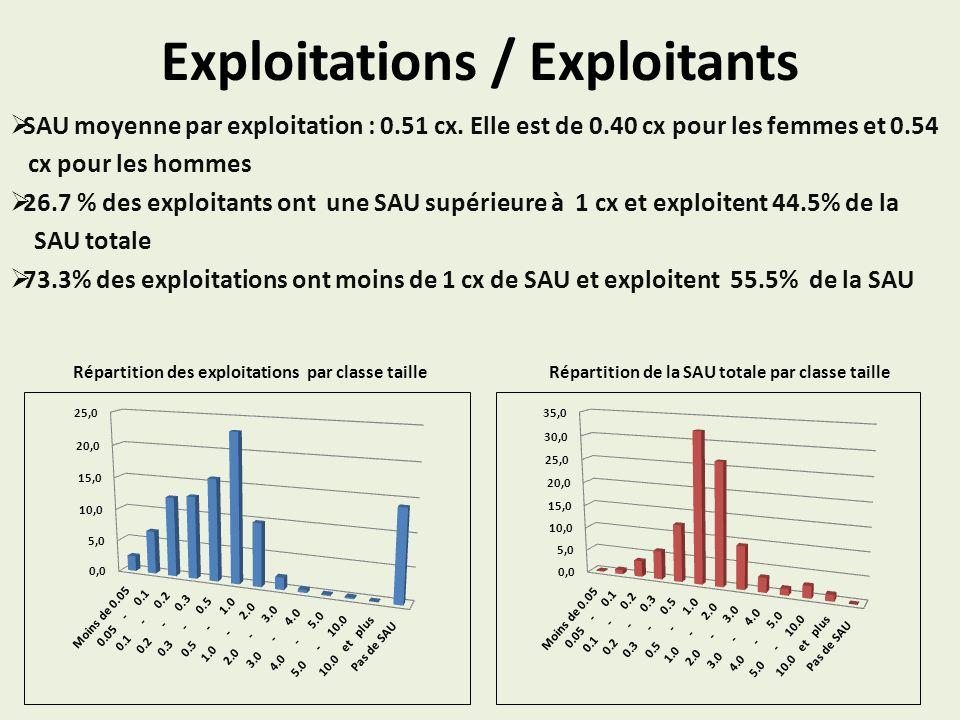 Exploitations / Exploitants SAU moyenne par exploitation : 0.51 cx. Elle est de 0.40 cx pour les femmes et 0.54 cx pour les hommes 26.7 % des exploita