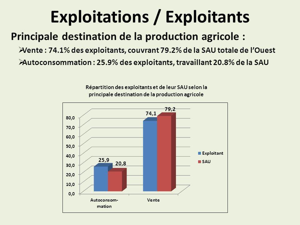 Exploitations / Exploitants Principale destination de la production agricole : Vente : 74.1% des exploitants, couvrant 79.2% de la SAU totale de lOuest Autoconsommation : 25.9% des exploitants, travaillant 20.8% de la SAU Répartition des exploitants et de leur SAU selon la principale destination de la production agricole