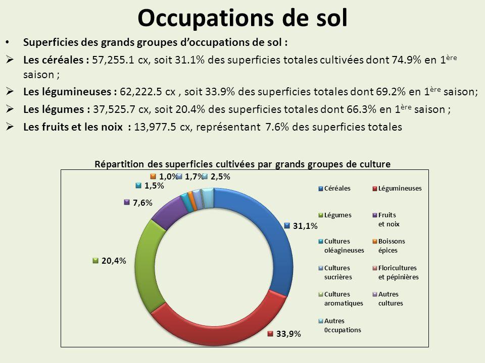 Occupations de sol Superficies des grands groupes doccupations de sol : Les céréales : 57,255.1 cx, soit 31.1% des superficies totales cultivées dont 74.9% en 1 ère saison ; Les légumineuses : 62,222.5 cx, soit 33.9% des superficies totales dont 69.2% en 1 ère saison; Les légumes : 37,525.7 cx, soit 20.4% des superficies totales dont 66.3% en 1 ère saison ; Les fruits et les noix : 13,977.5 cx, représentant 7.6% des superficies totales Répartition des superficies cultivées par grands groupes de culture