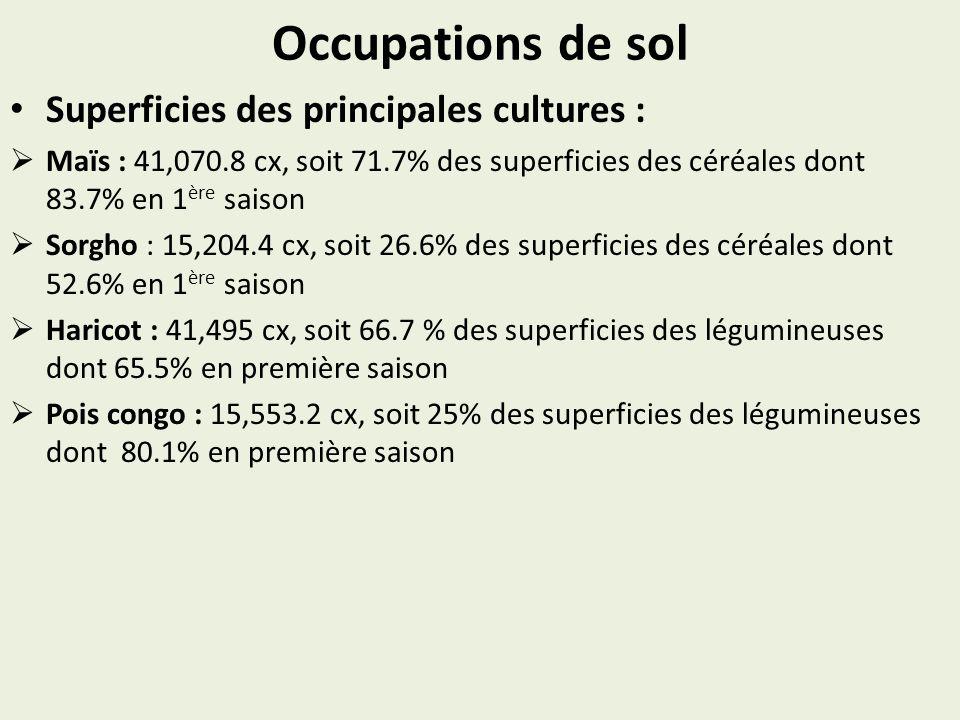 Occupations de sol Superficies des principales cultures : Maïs : 41,070.8 cx, soit 71.7% des superficies des céréales dont 83.7% en 1 ère saison Sorgho : 15,204.4 cx, soit 26.6% des superficies des céréales dont 52.6% en 1 ère saison Haricot : 41,495 cx, soit 66.7 % des superficies des légumineuses dont 65.5% en première saison Pois congo : 15,553.2 cx, soit 25% des superficies des légumineuses dont 80.1% en première saison
