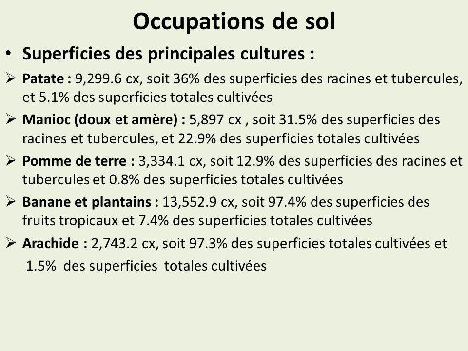 Occupations de sol Superficies des principales cultures : Patate : 9,299.6 cx, soit 36% des superficies des racines et tubercules, et 5.1% des superficies totales cultivées Manioc (doux et amère) : 5,897 cx, soit 31.5% des superficies des racines et tubercules, et 22.9% des superficies totales cultivées Pomme de terre : 3,334.1 cx, soit 12.9% des superficies des racines et tubercules et 0.8% des superficies totales cultivées Banane et plantains : 13,552.9 cx, soit 97.4% des superficies des fruits tropicaux et 7.4% des superficies totales cultivées Arachide : 2,743.2 cx, soit 97.3% des superficies totales cultivées et 1.5% des superficies totales cultivées