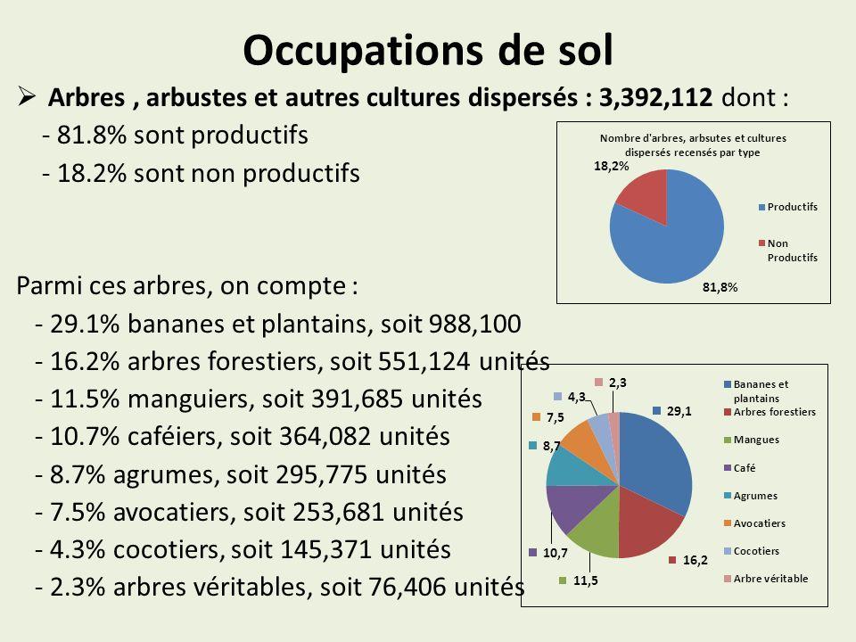 Occupations de sol Arbres, arbustes et autres cultures dispersés : 3,392,112 dont : - 81.8% sont productifs - 18.2% sont non productifs Parmi ces arbres, on compte : - 29.1% bananes et plantains, soit 988,100 - 16.2% arbres forestiers, soit 551,124 unités - 11.5% manguiers, soit 391,685 unités - 10.7% caféiers, soit 364,082 unités - 8.7% agrumes, soit 295,775 unités - 7.5% avocatiers, soit 253,681 unités - 4.3% cocotiers, soit 145,371 unités - 2.3% arbres véritables, soit 76,406 unités
