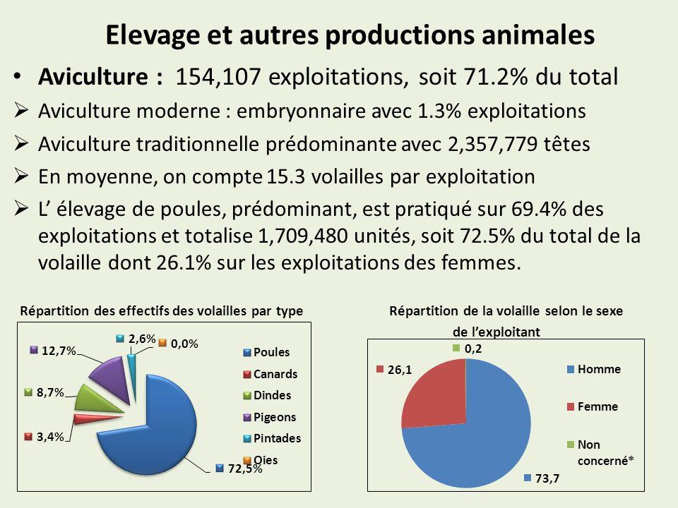 Elevage et autres productions animales Aviculture : 154,107 exploitations, soit 71.2% du total Aviculture moderne : embryonnaire avec 1.3% exploitations Aviculture traditionnelle prédominante avec 2,357,779 têtes En moyenne, on compte 15.3 volailles par exploitation L élevage de poules, prédominant, est pratiqué sur 69.4% des exploitations et totalise 1,709,480 unités, soit 72.5% du total de la volaille dont 26.1% sur les exploitations des femmes.