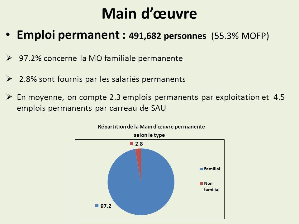 Main dœuvre Emploi permanent : 491,682 personnes (55.3% MOFP) 97.2% concerne la MO familiale permanente 2.8% sont fournis par les salariés permanents En moyenne, on compte 2.3 emplois permanents par exploitation et 4.5 emplois permanents par carreau de SAU Répartition de la Main d œuvre permanente selon le type