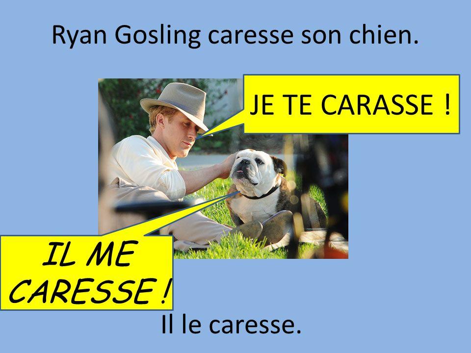 Ryan Gosling caresse son chien. Il le caresse. IL ME CARESSE ! JE TE CARASSE !