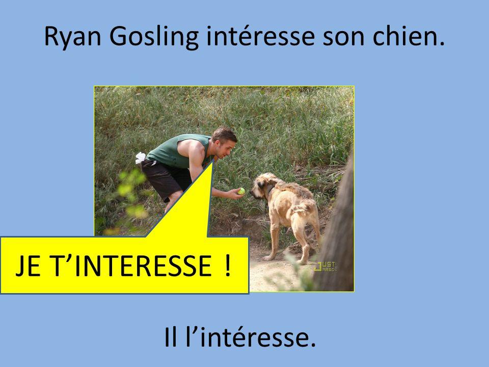 Ryan Gosling intéresse son chien. Il lintéresse. JE TINTERESSE !