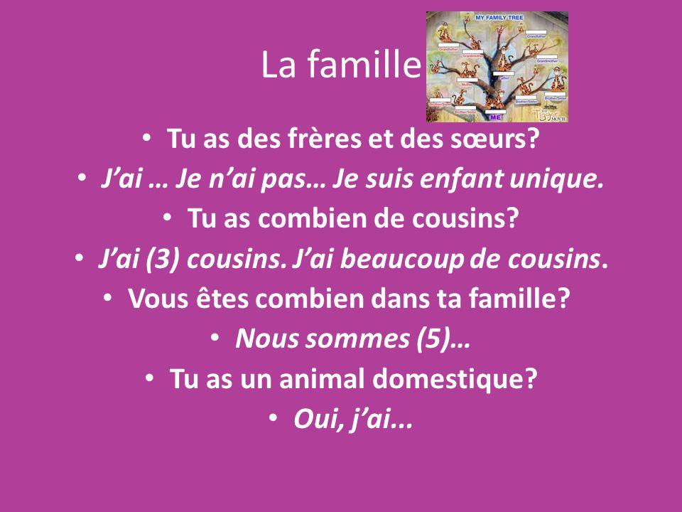 La famille Tu as des frères et des sœurs? Jai … Je nai pas… Je suis enfant unique. Tu as combien de cousins? Jai (3) cousins. Jai beaucoup de cousins.