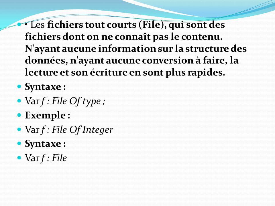 Les fichiers tout courts (File), qui sont des fichiers dont on ne connaît pas le contenu. N'ayant aucune information sur la structure des données, n'a
