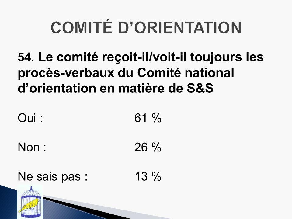 54. Le comité reçoit-il/voit-il toujours les procès-verbaux du Comité national dorientation en matière de S&S Oui :61 % Non :26 % Ne sais pas :13 %