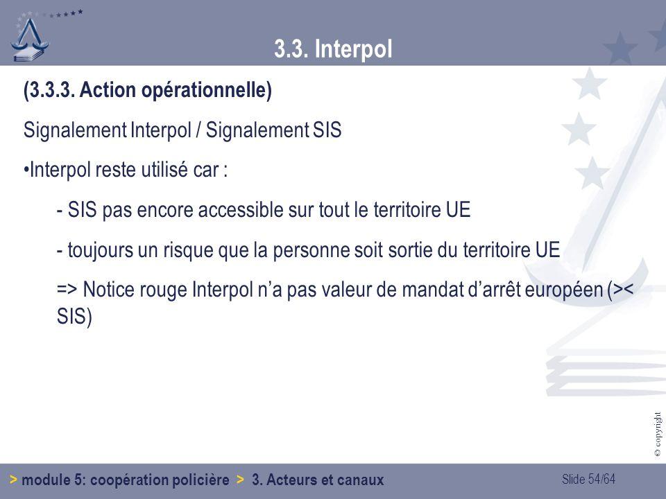 Slide 54/64 © copyright 3.3.Interpol > module 5: coopération policière > 3.