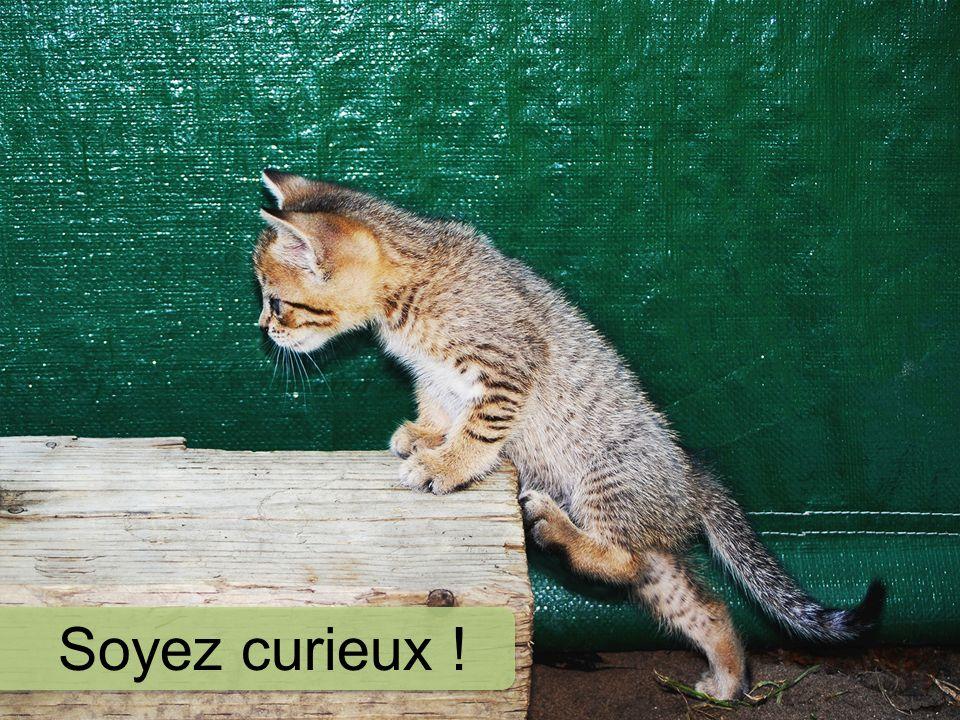 Soyez curieux !