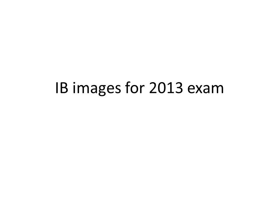 IB images for 2013 exam