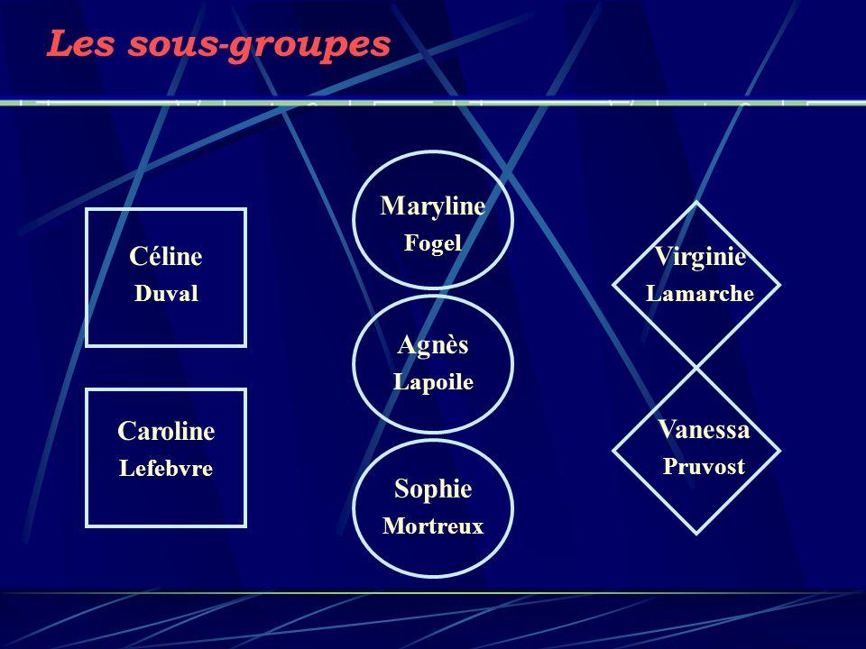 Les sous-groupes Vanessa Pruvost Maryline Fogel Agnès Lapoile Sophie Mortreux Caroline Lefebvre Céline Duval Virginie Lamarche