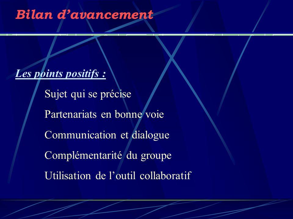 Bilan davancement Les points positifs : Sujet qui se précise Partenariats en bonne voie Communication et dialogue Complémentarité du groupe Utilisatio
