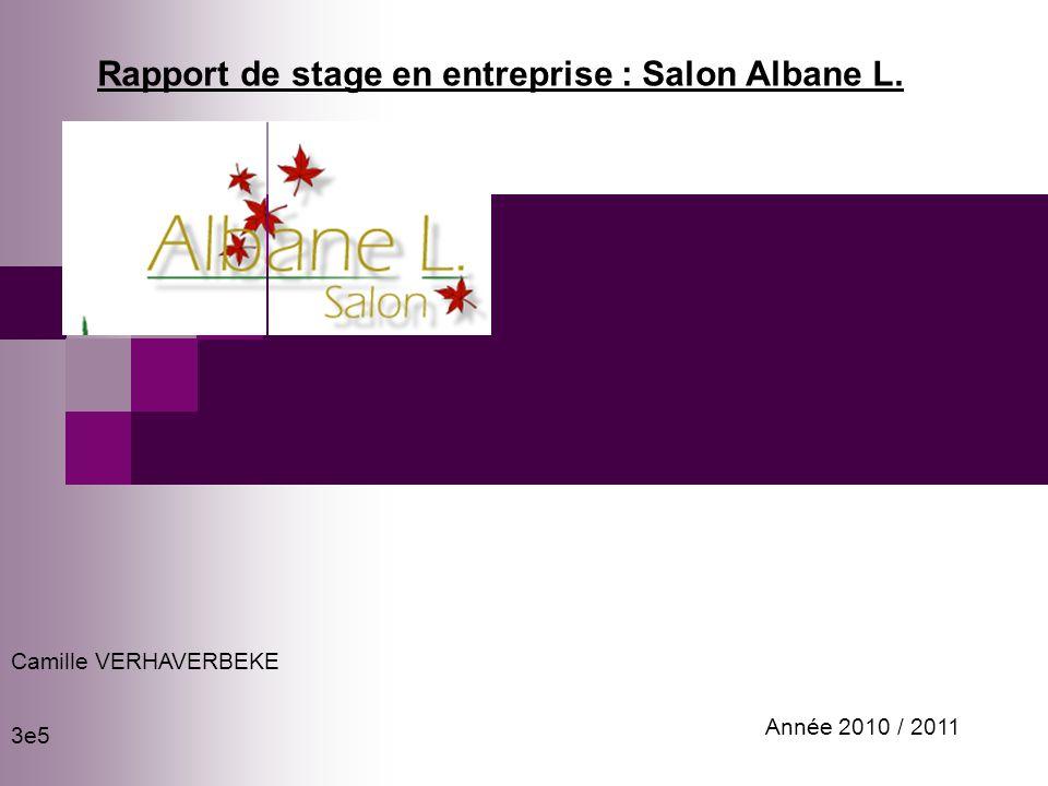Rapport de stage en entreprise : Salon Albane L. Camille VERHAVERBEKE 3e5 Année 2010 / 2011