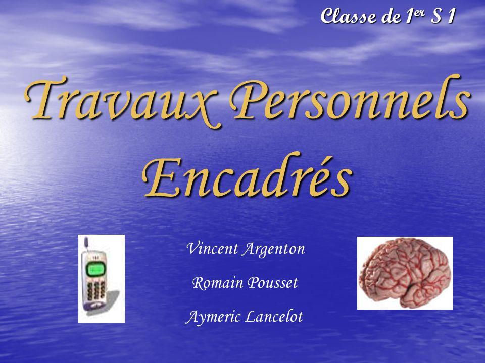Travaux Personnels Encadrés Classe de 1er S 1 Vincent Argenton Romain Pousset Aymeric Lancelot