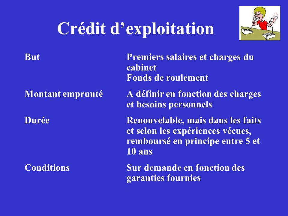 Crédit dexploitation ButPremiers salaires et charges du cabinet Fonds de roulement Montant empruntéA définir en fonction des charges et besoins person