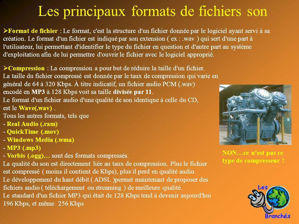 7 Les principaux formats de fichiers son Format de fichier : Le format, c'est la structure d'un fichier donnée par le logiciel ayant servi à sa créati
