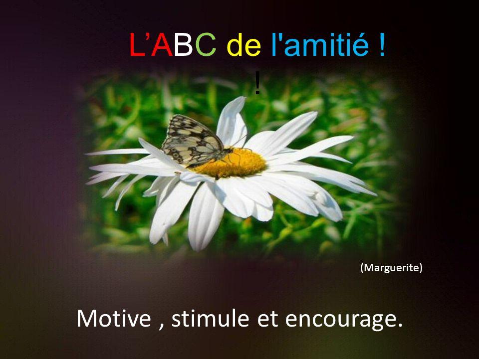 (Lotus) Louange et sourire. LABC de l'amitié !