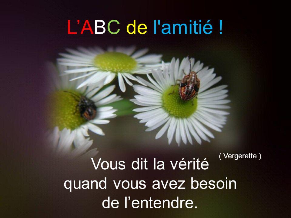 La b Utilise vos talents.. LABC de l'amitié ! ( Ursinia )