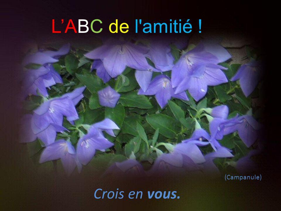 (Marguerite) Motive, stimule et encourage. LABC de l amitié ! !