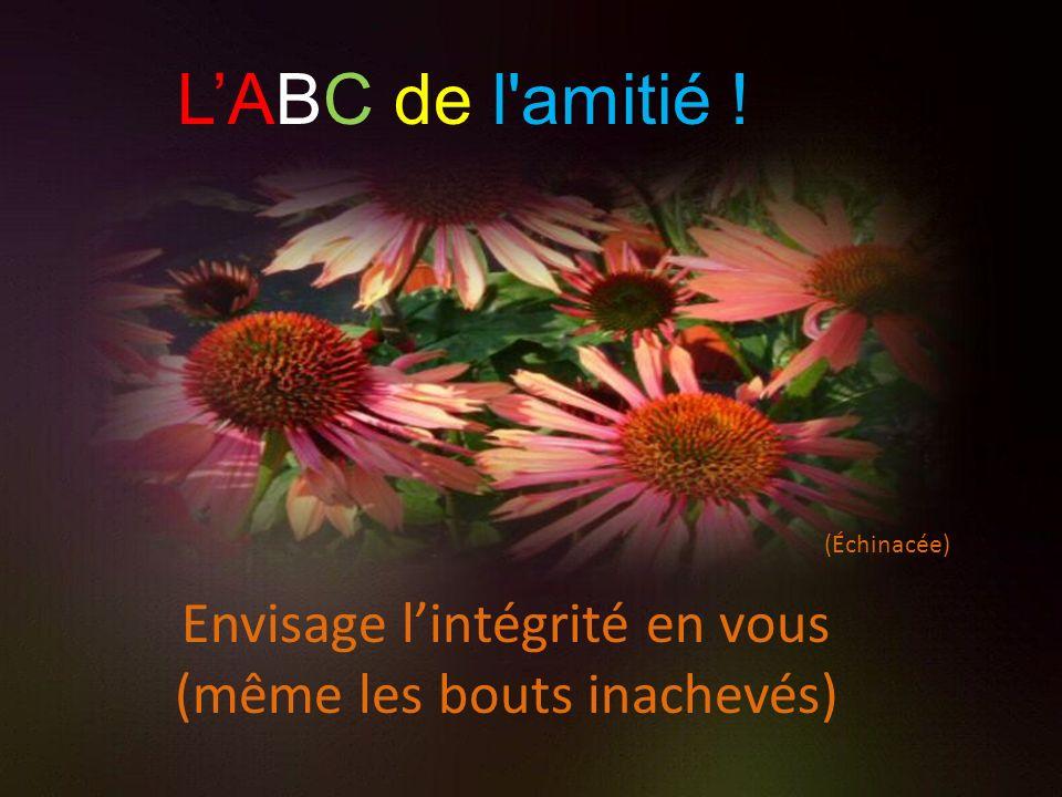 (Échinacée) Envisage lintégrité en vous (même les bouts inachevés) LABC de l amitié !